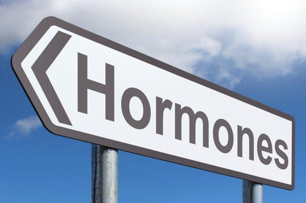 A reposição hormonal